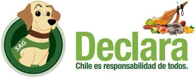 Въезд в Чили: таможенные правила ввоза в Чили