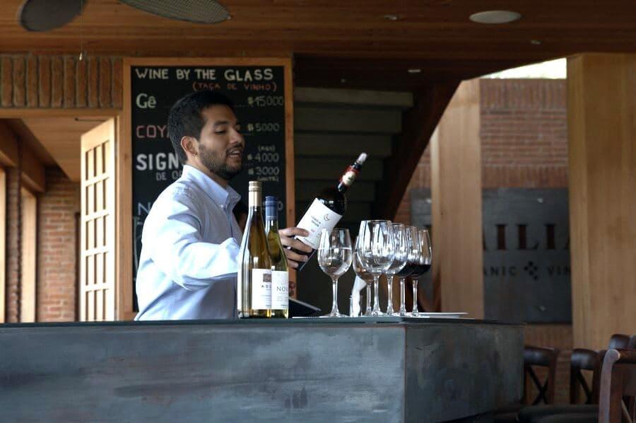 Винодельня Emiliana, Чили